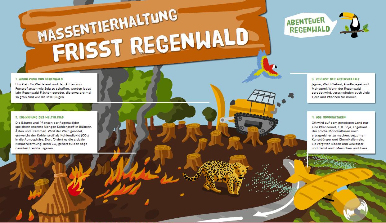MassentierhaltungRegenwald